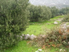 Podaca, poljoprivredno zemljište